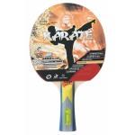 Ракетка для настольного тенниса GUARD