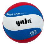 Волейбольный мяч Gala PRO-LINE